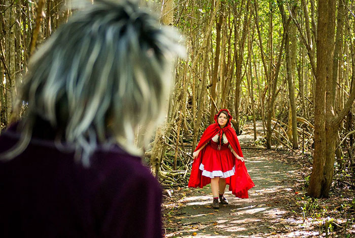 Little Red Riding Hood walks through the woods